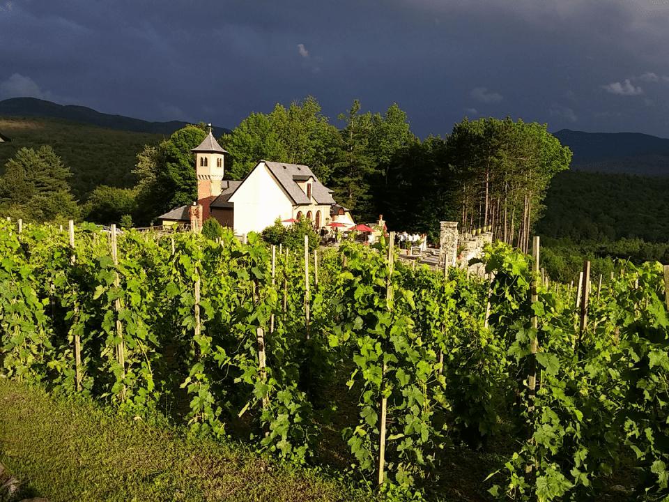 Vignoble Chapelle Ste-Agnès Sutton