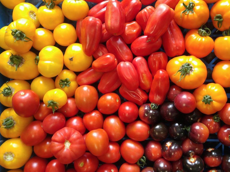 Marché de fruits et/ou légumes Les Jardins Baielactée Saguenay Légumes