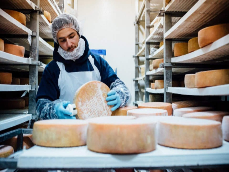 Fromagerie Médard creation of local fine cheeses local purchase local products