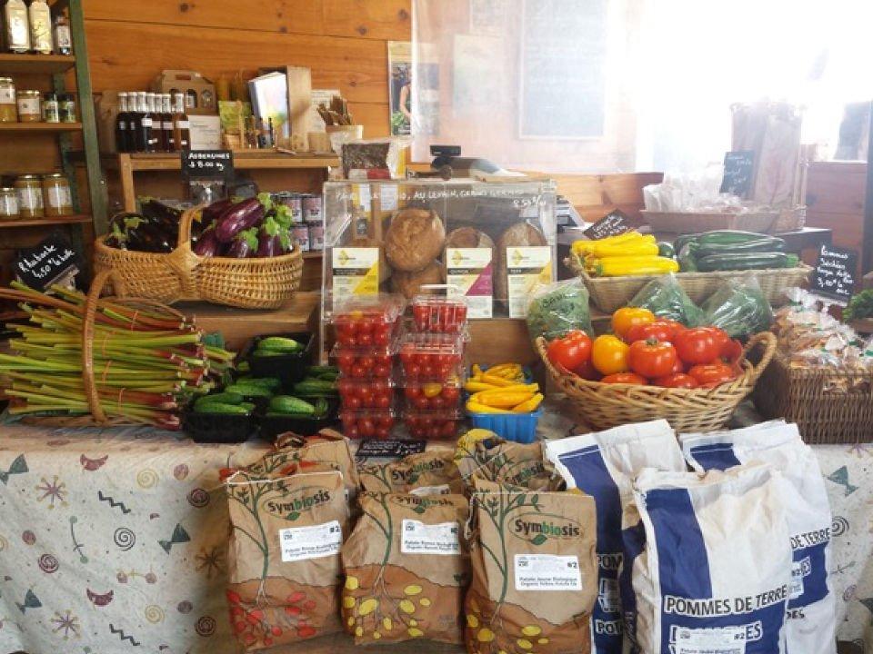 Produce markets Ferme Cadet-Roussel Mont-Saint-Grégoire