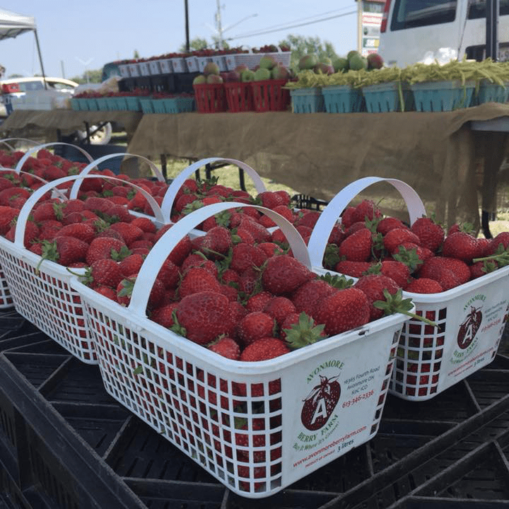 Food produce markets produce picking Avonmore Berry Farm Avonmore Ulocal local product local purchase Strawberry