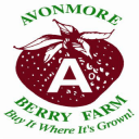 Food produce markets produce picking Avonmore Berry Farm Avonmore Ulocal local product local purchase