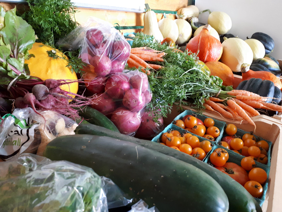 fruits and vegetables Produce markets organic La Ferme du Forestier-Maraîcher Ulocal local product local purchase