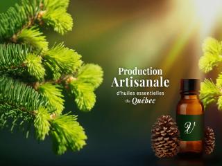 Cosmétiques huiles essentielles Vintsini St-Jean-sur-Richelieu Ulocal produit local achat local
