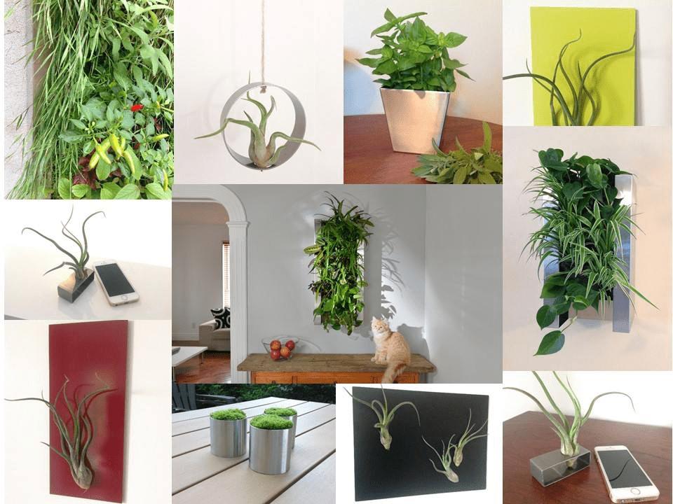 Décoration extérieur décoration intérieur Vert Métal L'Ancienne-Lorette Ulocal produit local achat local