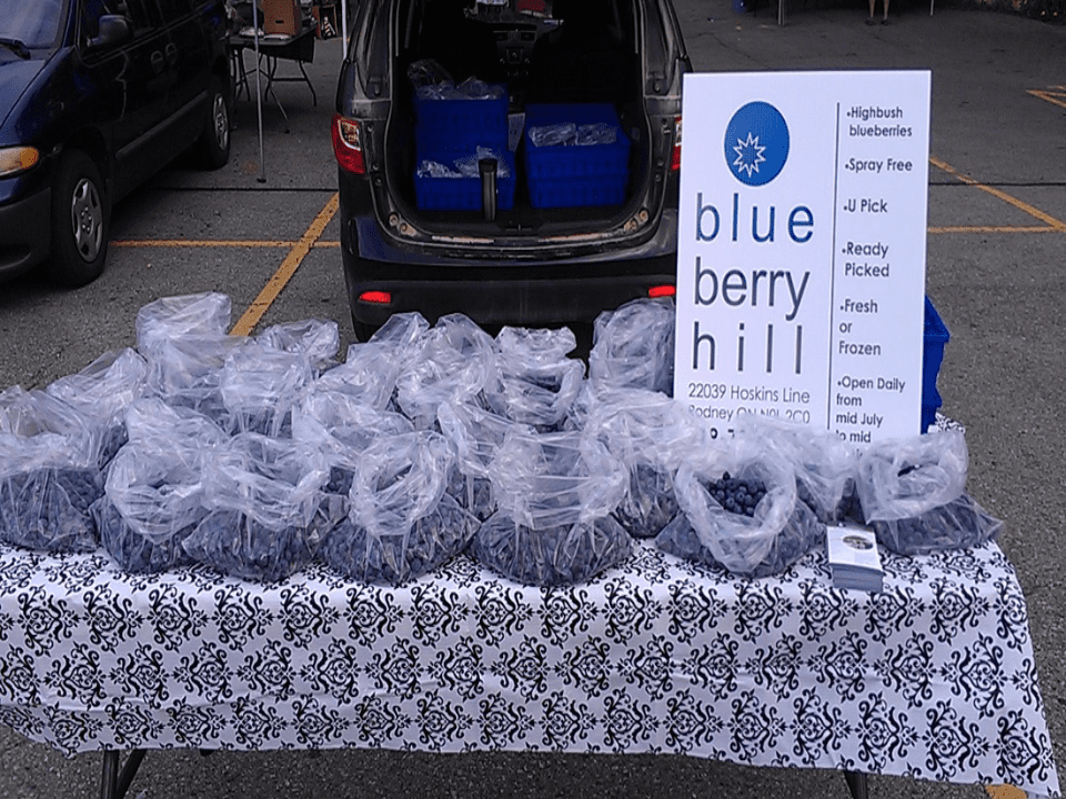 Produce picking Blueberry Kiosk Blueberry Hill Farm Rodney Ulocal Local Product Local Purchase