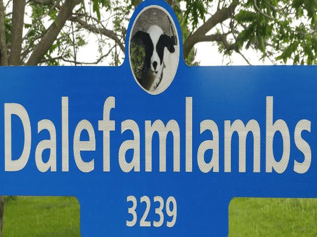 boucherie enseigne Dalefamlambs Kemptville Ulocal produit local achat local