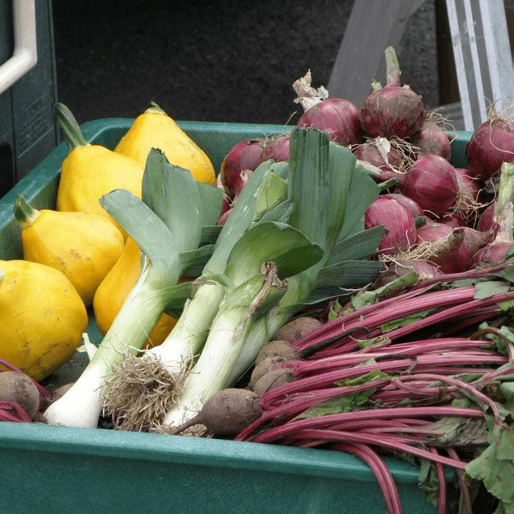 marché public courges poireaux betteraves Eganville Farmers Market Eganville Ulocal produit local achat local