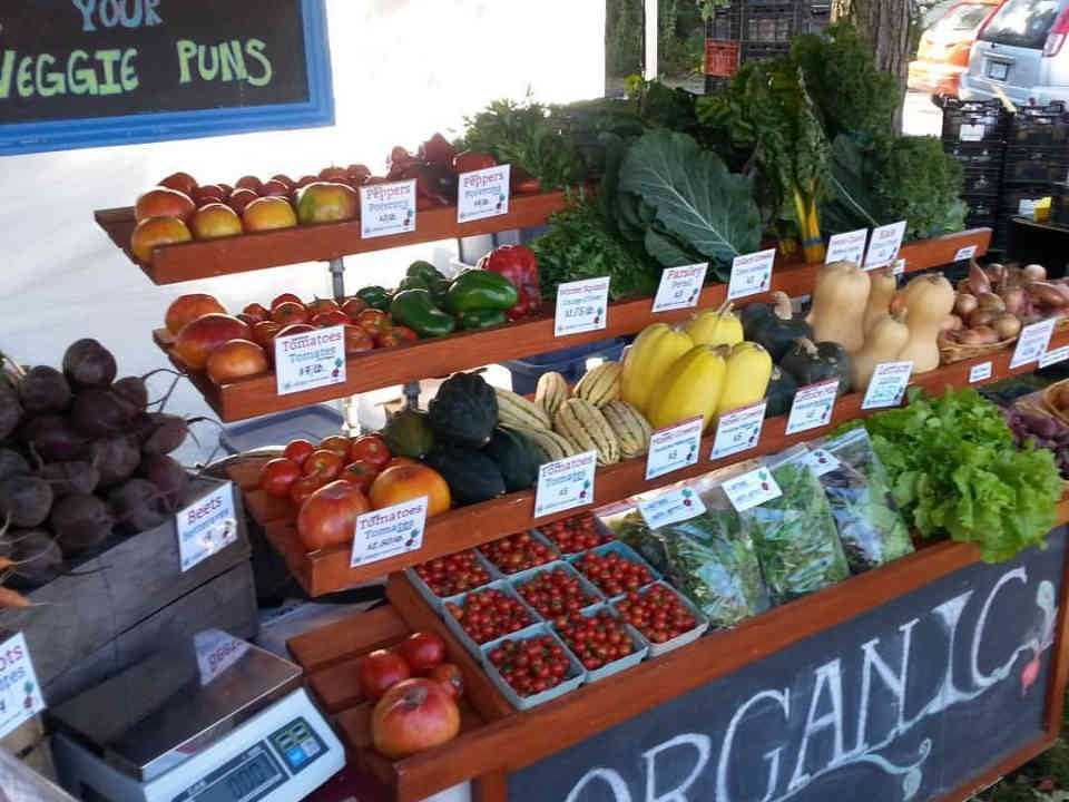 Family Farmer kiosk vegetables fruits BeetBox Co-op Farm Nepean Ulocal Local Product Local Purchase