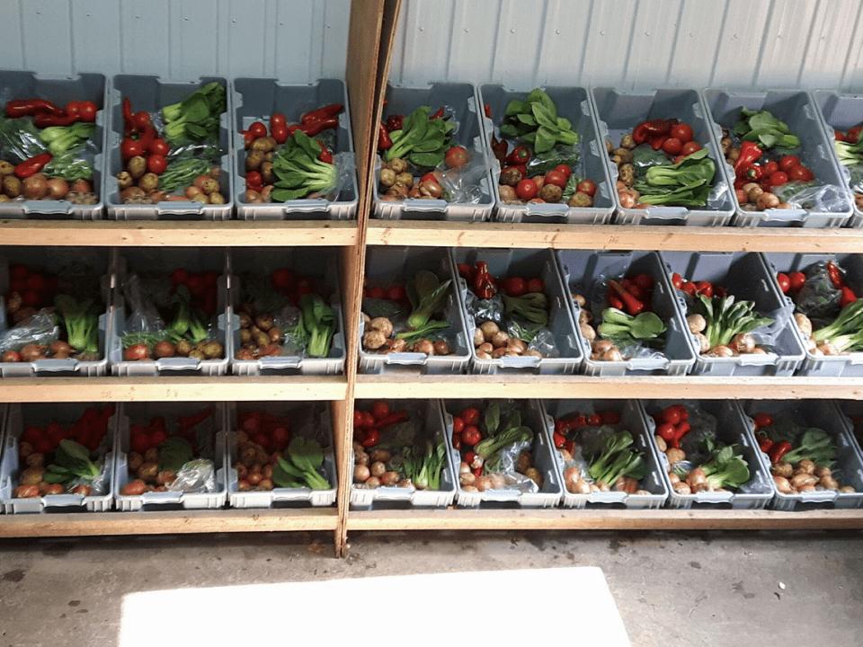 Fermiers de Famille Fruits et légumes biologiques Au potater du paysan Sainte-Clotilde-de-Châteauguay Ulocal produit local achat local