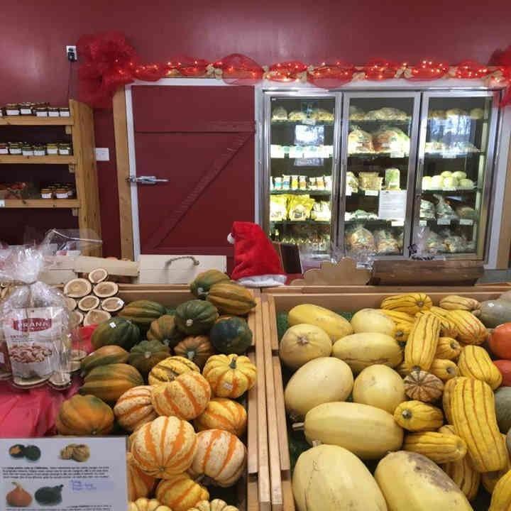 Fermiers de famille fruits et légumes bio Jardins Bio Campanipol Sainte-Geneviève-de-Batiscan Ulocal produit local achat local