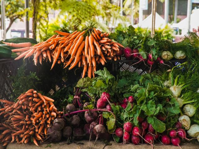 marché public betteraves et carottes Chesterville Farmers Market Chesterville Ulocal produit local achat local