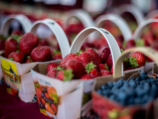 marché public fraises bleuets Cumberland Farmer's Market Ottawa Ulocal produit local achat local