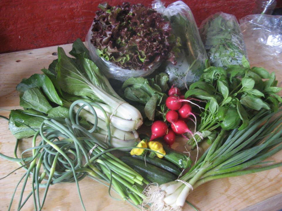 Fermiers de famille fruits et légumes panier bio Ferme Aux Solstices Namur Ulocal produit local achat local