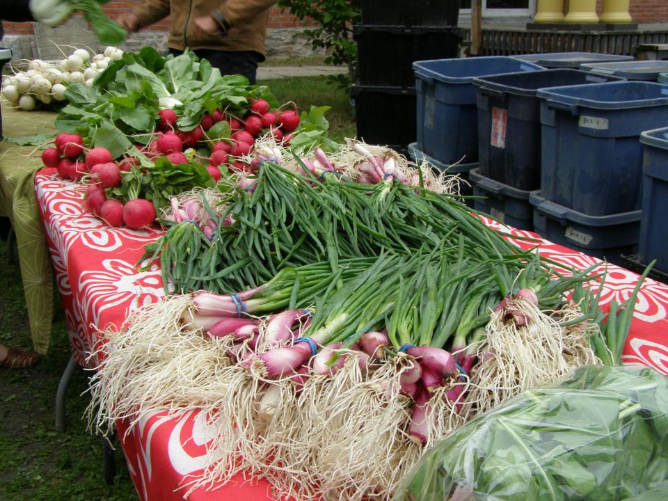 Fermiers de famille paniers bio fruits et légumes Ferme Croque-Saisons Lingwick Ulocal produit local achat local