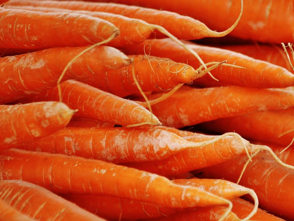 Fermiers de famille fruits et légumes Ferme de la Colline du chêne, coopérative de solidarité Bromont Ulocal produit local achat local