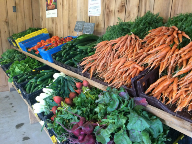 Fermiers de famille paniers bio fruits et légumes Ferme de la Coulée Douce Saint-Antoine-de-Tilly Ulocal produit local achat local