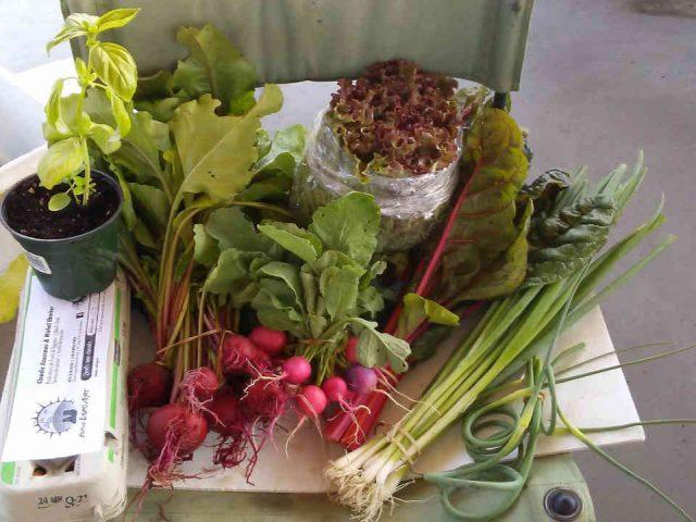 Fermiers de famille fruits et légumes bio ferme Espo'Art Amos Ulocal produit local achat local