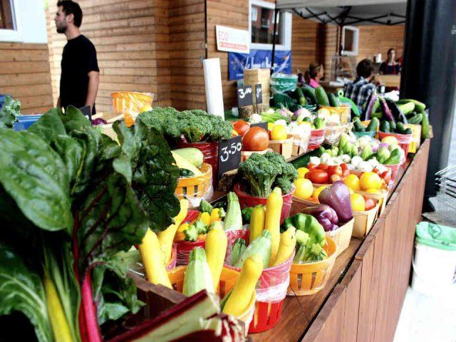 Fermiers de famille fruits et légumes bio Ferme la Bourrasque Saint-Nazaire-d'Acton Ulocal produit local achat local