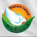 vente de viande logo Ferme Rêveuse Curran Ulocal produit local achat local