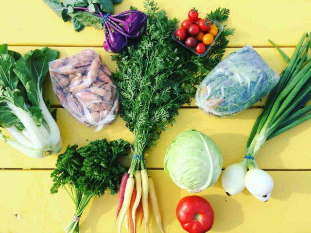 Fermiers de famille fruits et légumes bio ventes viande La coopérative Ferme Terre Partagée Rogersville Ulocal produit local achat local