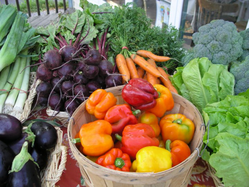 Family Farmers Organic Fruit and Vegetable Basket Cooperative Farm Tourne-Sol Cedars Ulocal Local Product Local Purchase