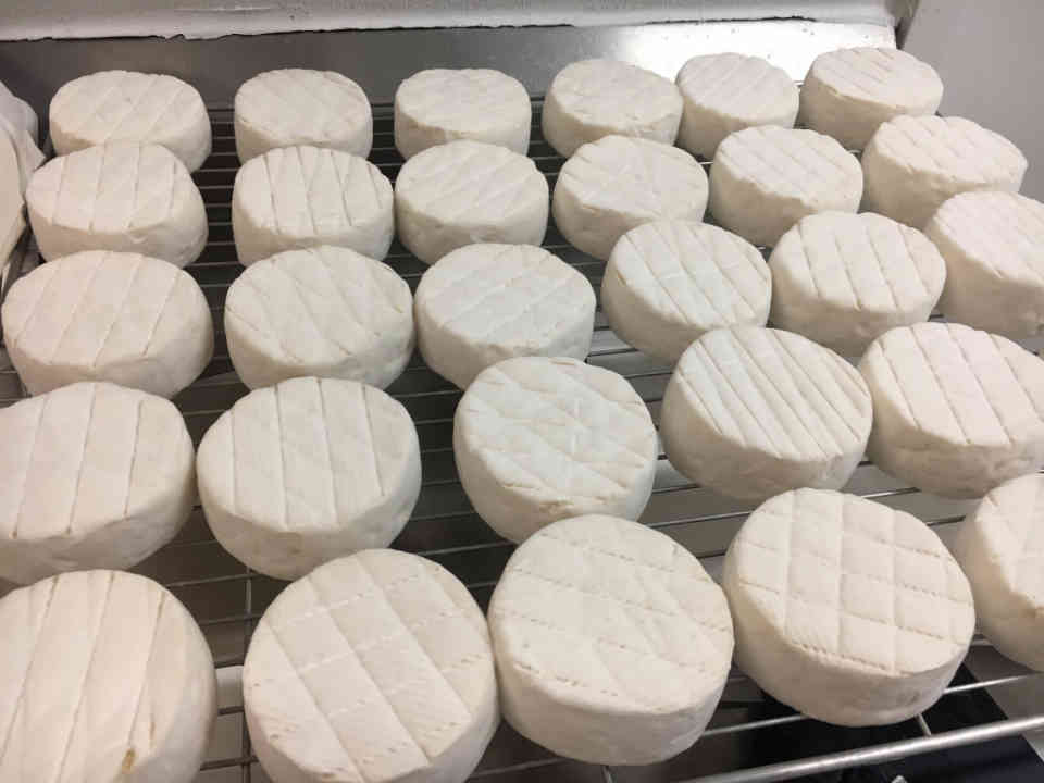 Cheese factories cheese Fromagerie les Folies Bergères Thurso Ulocal local product local purchase