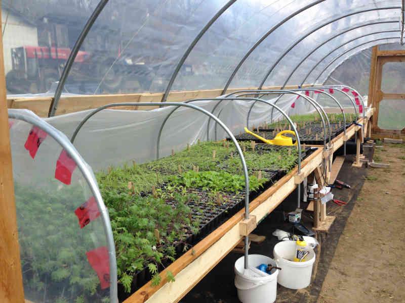 fermiers de famille fruits et légumes bio Saint-André-Avellin Ulocal produit local achat local