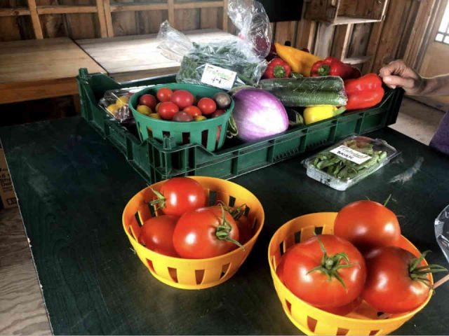 Fermiers de famille paniers bio fruits et légumes Jardins Fraisdel Acton Vale Ulocal produit local achat local