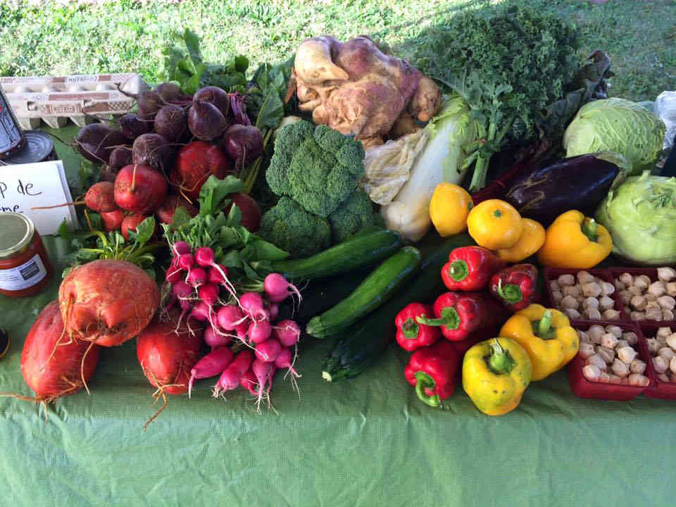 Farmers Family Fruit and Vegetable Baskets Organic Farm Bio-Vegetable Brigham Ulocal Local Product Local Purchase