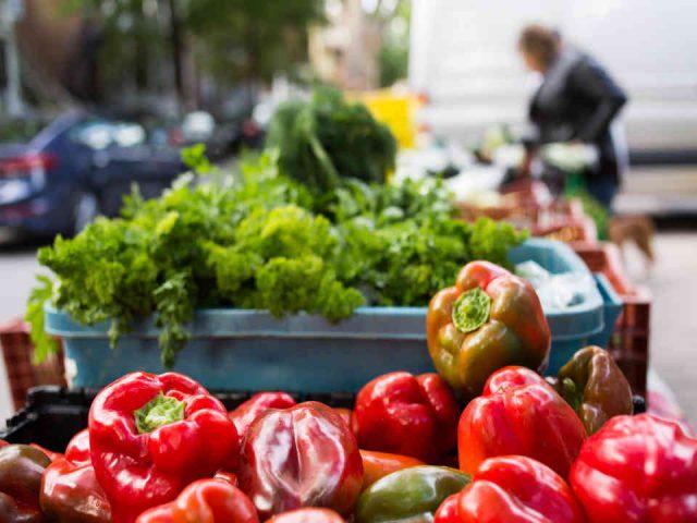 Fermiers de famille paniers bio fruits et légumes La Ferme Hantée de Lotbinière Ulocal produit local achat local
