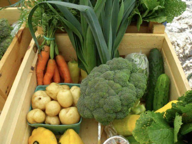 Fermiers de famille fruits et légumes bio La Ferme Trotteuse Sainte-Marie-de-Blandford Ulocal produit local achat local