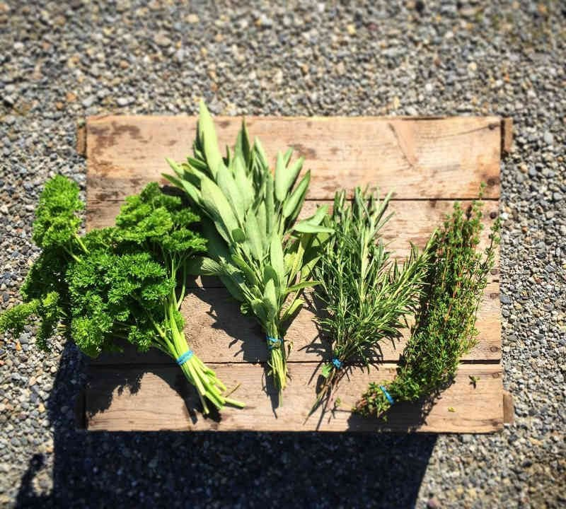 Fermiers de famille fruits et légumes bio La JoualVert Cookshire-Eaton Ulocal produit local achat local