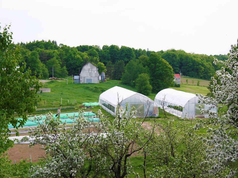 Fermiers de famille parniers bio alimentation fruits et légumes Le Lopin Saint-Anselme Ulocal produit local achat local