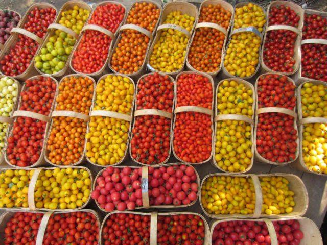 Fermiers de famille fruits et légumes paniers bio Les Bontés de la Vallée Saint-Chrysostome Ulocal produit local achat local