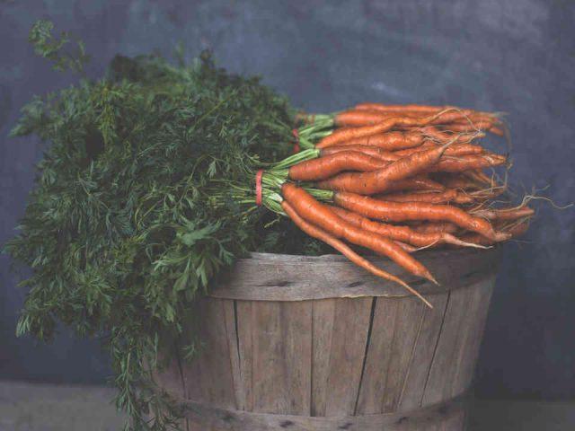 Fermiers de famille fruits et légumes bio Ferme Les Carottés Cowansville Ulocal produit local achat local