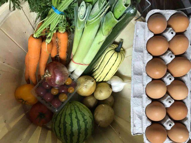 Fermiers de famille paniers bio fruits et légumes Les Jardins Bio du Solstice Mont-Laurier Ulocal produit local achat local