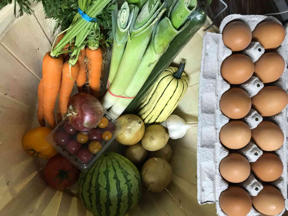Family Farmers Baskets Organic Fruit and Vegetable Solstice Mont-Laurier Organic Gardens Ulocal local product local purchase