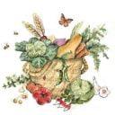 Fermiers de famille paniers bio fruits et légumes Les Jardins de Céline Château-Richer Ulocal produit local achat local