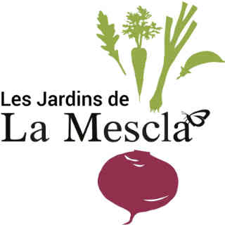 Family farmers organic organic vegetable baskets Les Jardins de la Mescla Neuville Ulocal local product local purchase