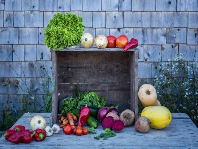Fermiers de famille fruits et légumes bio Les Jardins de la Terre Saint-Paul-d'Abbotsford Ulocal produit local achat local