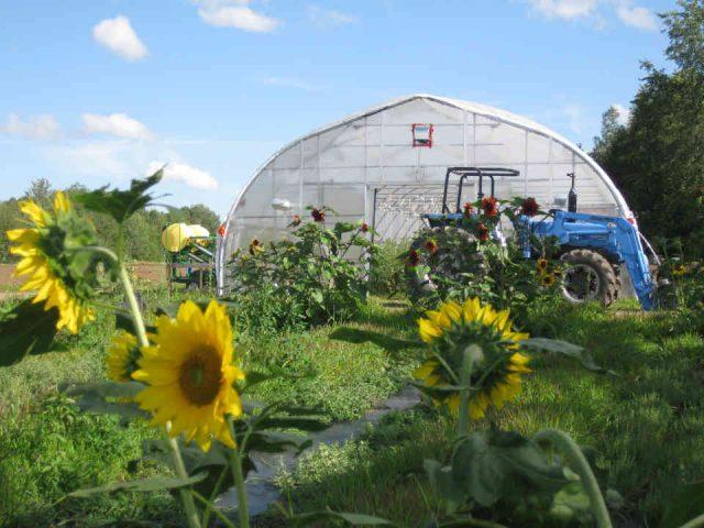 Fermiers de famille fruits et légumes bio Les Jardins de l'Arpenteuse Hatley Ulocal produit local achat local