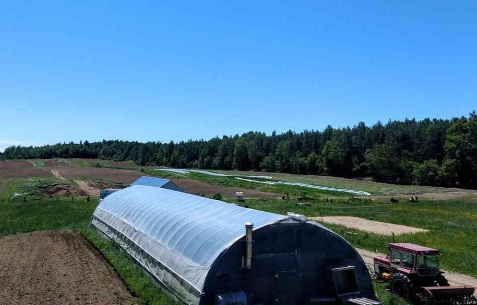 Fermiers de famille paniers bio fruits et légumes bio Les Jardins de Saint-Georges Sainte-Thècle Ulocal produit local achat local