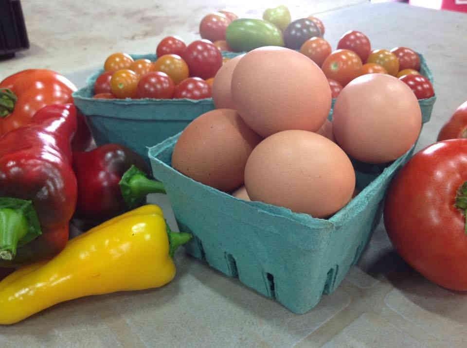 Fermiers de famille paniers bio fruits et légumes biologiques Les jardins Du Futur Simple Saint-Vallier Ulocal produit local achat local