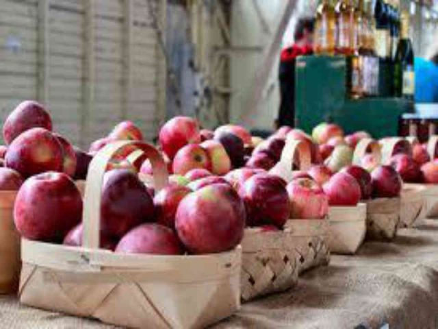 Autocueillette paniers de pommes Halls Apple Market Brockville Ulocal produit local achat local