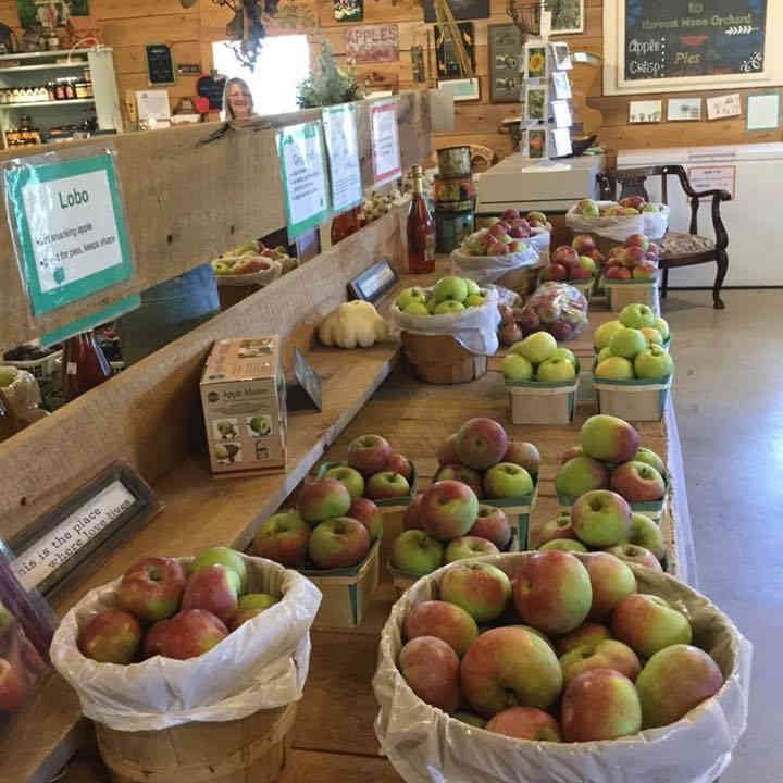 Produce Market apples Harvest Moon Orchard Ottawa Ulocal Local Product Local Purchase