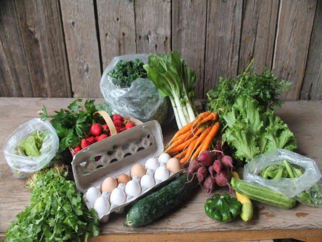 Marché de fruits et légumes légumes oeufs Juniper Farm Wakefiled Ulocal produit local achat local