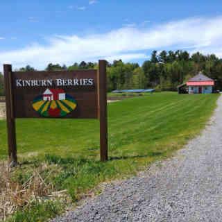 Auto-cueillette enseigne Kinburn Berries Kinburn Ulocal produit local achat local
