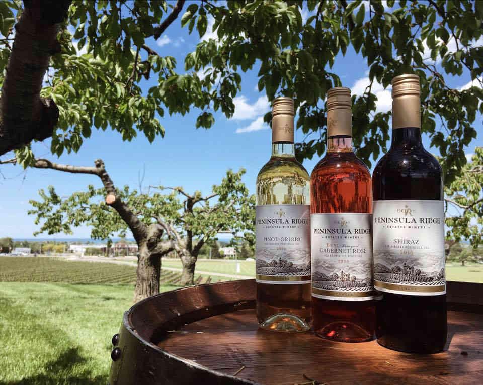 Vineyard Wine Bottles Peninsula Ridge Estates Winery Lincoln Ulocal Local Product Local Purchase