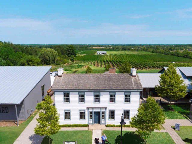 Vignoble vignoble Ravine Vineyard Estate Winery Niagara-on-the-Lake Ulocal produit local achat local